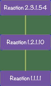 Réseau métabolique de réactions. Image par l'auteur.