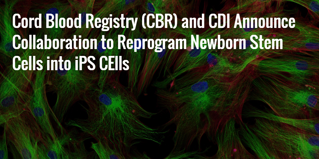 Cord Blood Registry (CBR) and CDI Partner to Reprogram Cord Blood into iPS Cells