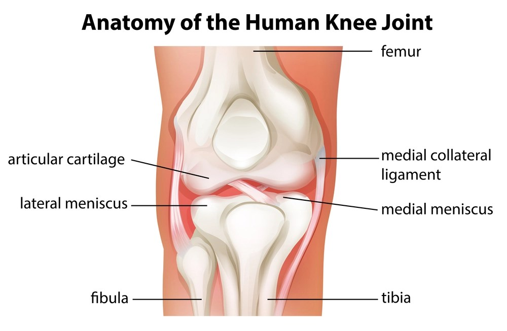 Stem Cell Therapy Used to Treat Torn Meniscus