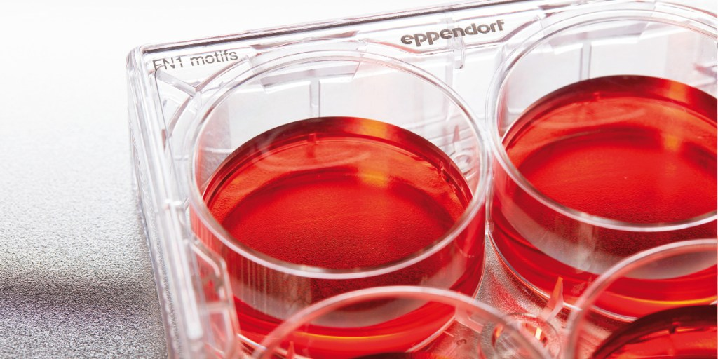 Eppendorf introduces first ready-to-use, synthetic cell cultureware for iPSC and MSC stem cells