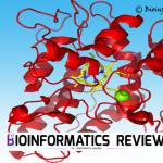 homology modeling methodology