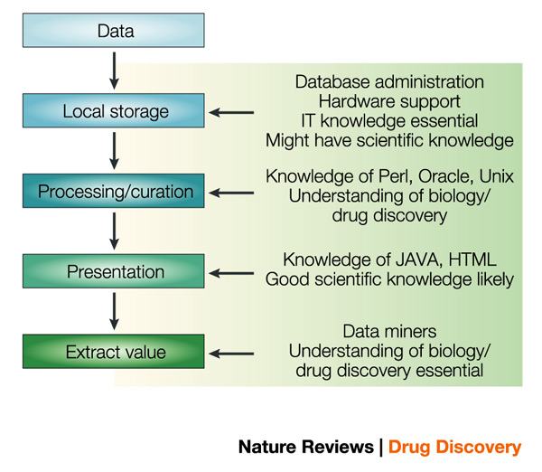 Skills required in bioinformatics at different stages
