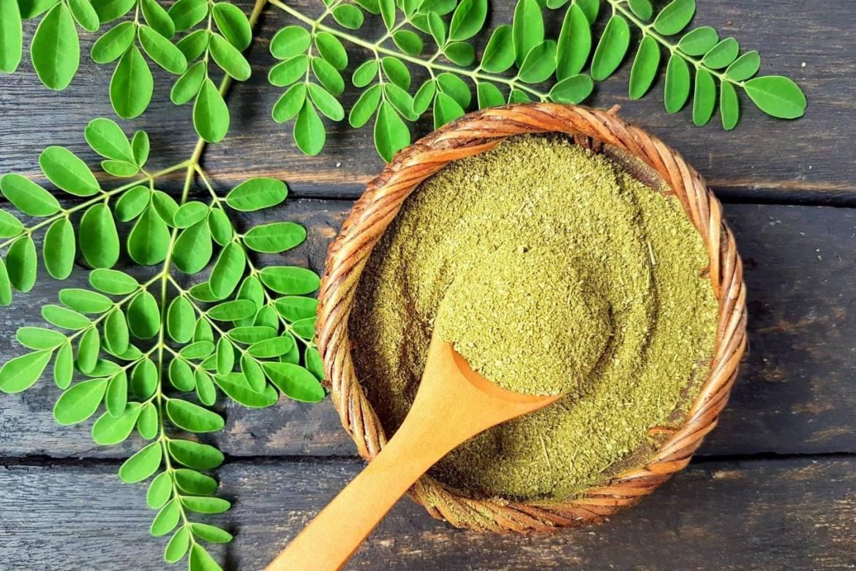 Moringa prášok Bohatá rastlinná na vitamíny, minerály  a antioxidantov
