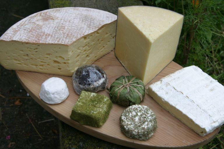 Käsevariation auf Servierbrett © Bio Austria