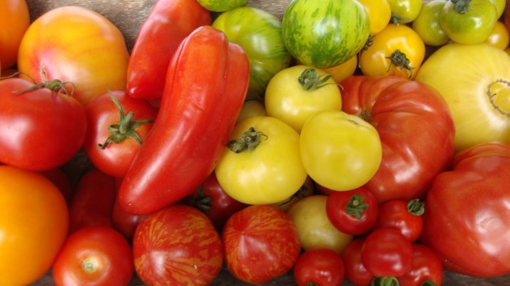 Tomaten Paprika Vielfalt © Bio Austria