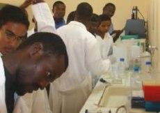Travaux pratiques au laboratoire du CREC au Bénin - promotion II MIE 2007 ©MIE