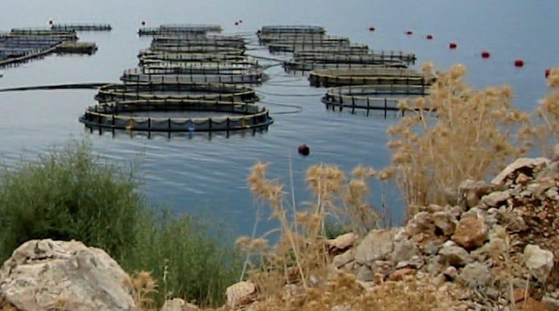 master baemt bioressources aquatiques