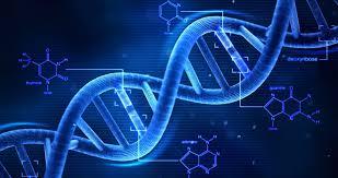 Izolovanje DNK iz biljaka