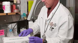 Biomedicina - biomédicas