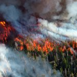 A hora de agir contra as mudanças climáticas
