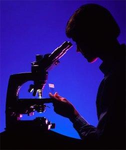 Microscópio ótico - microscopia