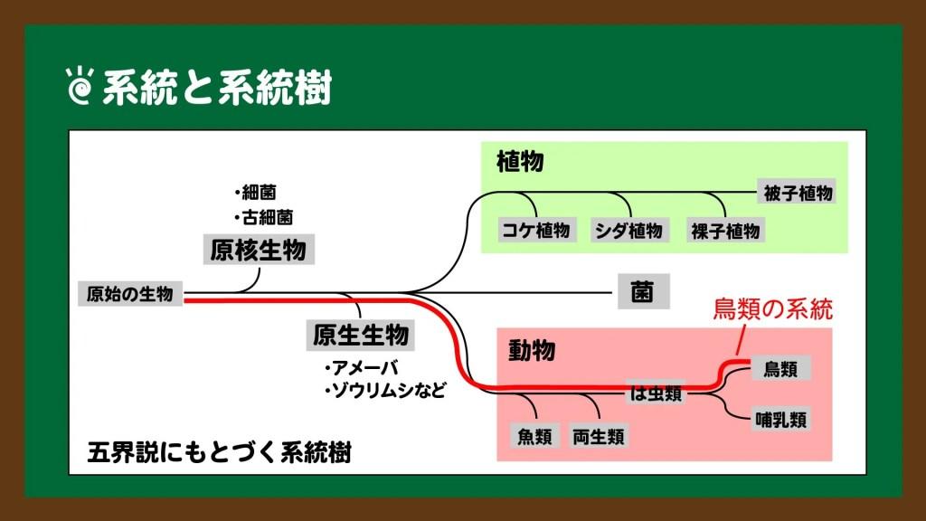 系統と系統樹