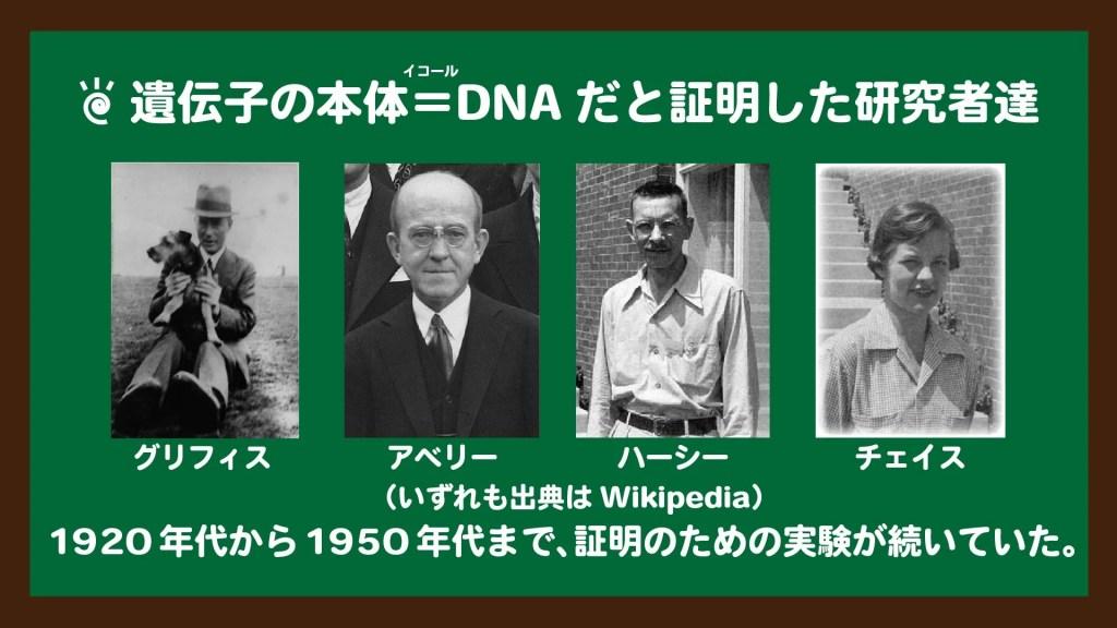 スライド1:遺伝子の本体=DNAだと証明した研究者たち