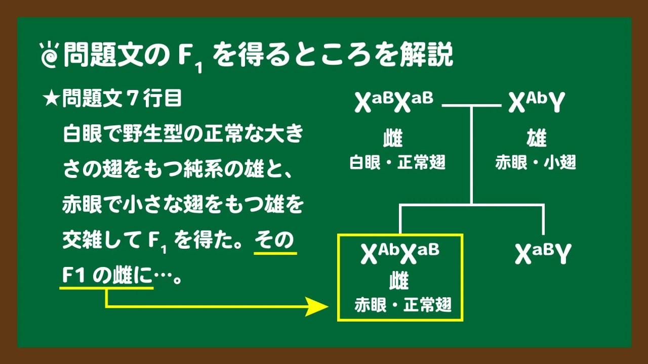 スライド2:問題文7行目のF1を得るところを図説