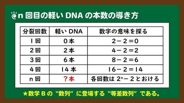 スライド10:n回目の軽いDNAは等差数列で導く