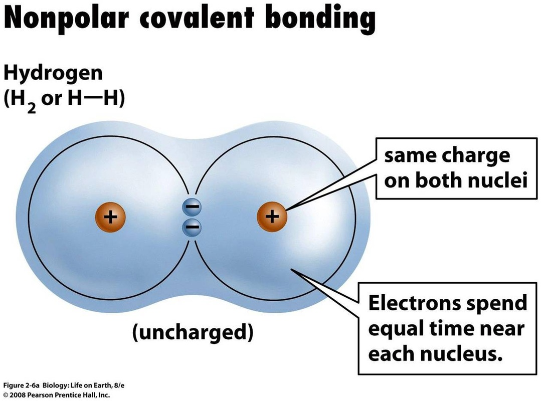 How Does A Polar Covalent Bond Differ From An Nonpolar
