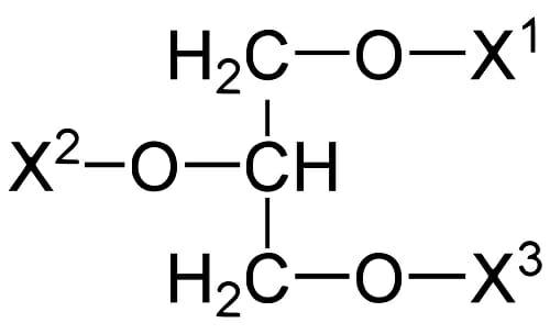 Acilglicerina