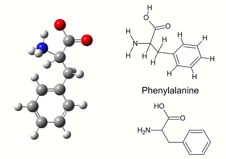 Estructura de fenilalanina