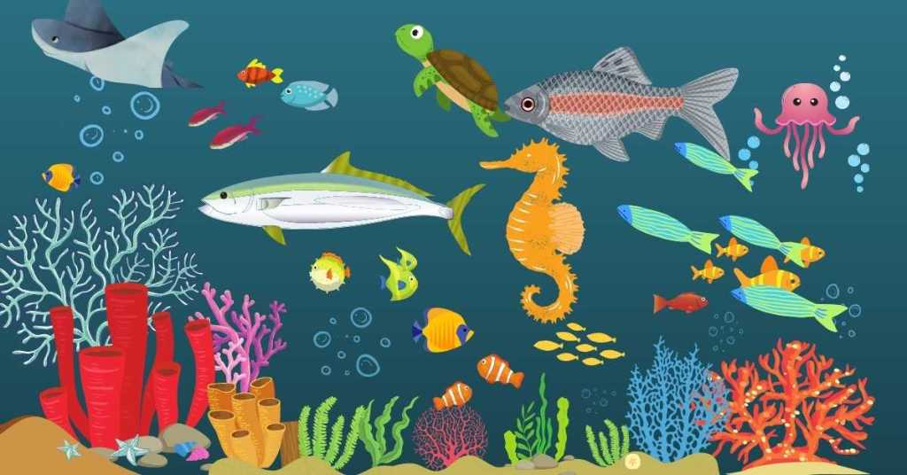 Ecological classification of fishes