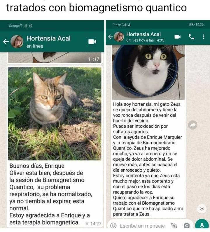 WhatsApp Image 2020-09-24 at 21.02.40