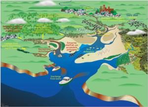 Threats to estuaries  Estuaries