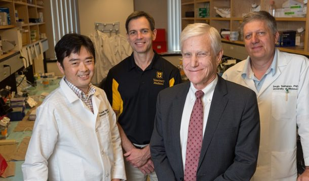 From left, Yusuke Higashi, PhD; Doug Bowles, PhD; Patrick Delafontaine, MD; and Sergiy Sukhanov, PhD, are researching the effectiveness of Insulin Growth Factor-1 in reducing plaque in arteries.