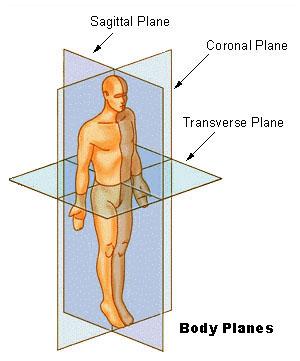 from URL: http://training.seer.cancer.gov/modu...