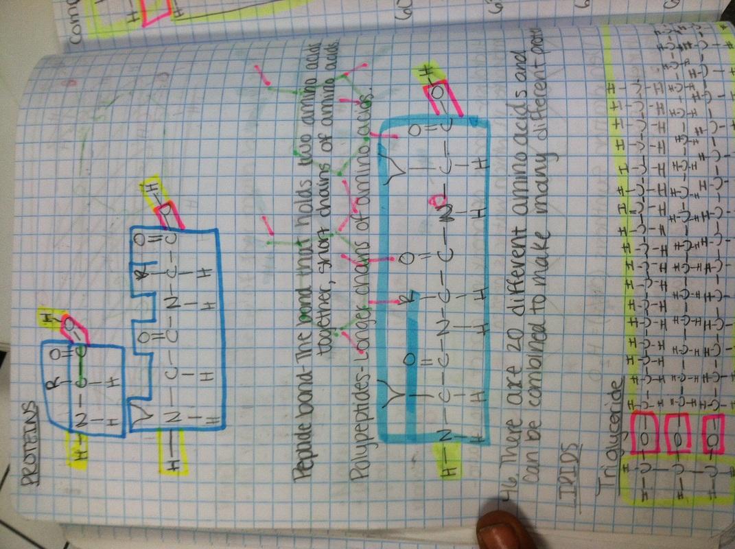 Pbs Classroom Activities