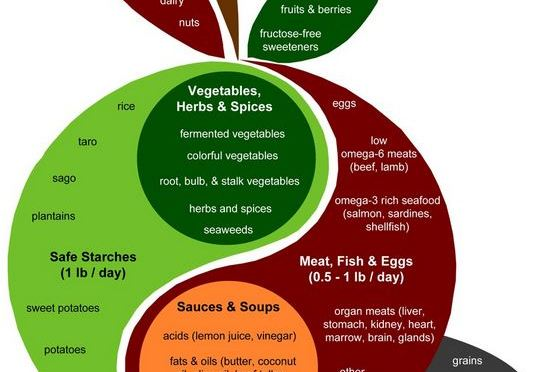 """Paul Jaminets """"Perfect Health Diet"""" Details"""