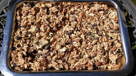 Nutrient Dense Whole Foods: SCD CRUNCHY, NUTTY, CINNAMONY, GRANOLA