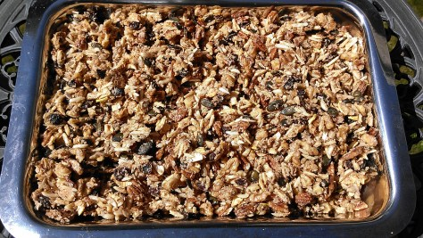 Walnuts & Pecans: How To Soak and Dehydrate
