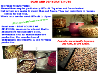 Soak and Dehydrate Nuts