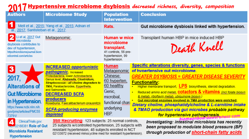 Source: Hypertension Microbiome Dsybiosis, biomeonboardawareness.com
