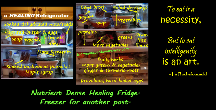 What's in a Practical Whole Foods PALEO, SCD, Gaps Healing Fridge?