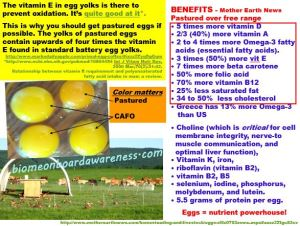 Pastured egg benefits