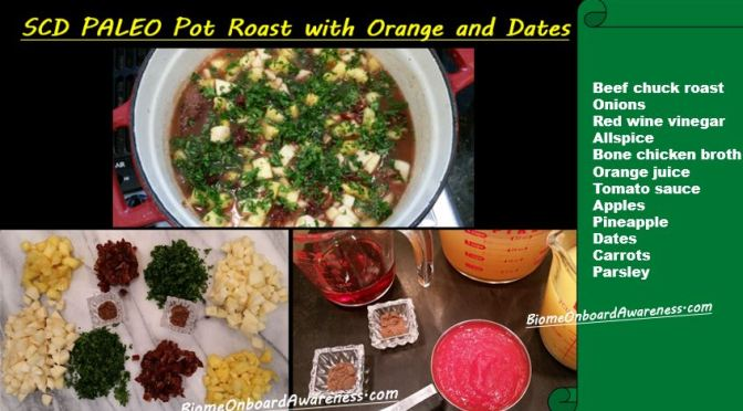 SCD PALEO Pot Roast with Orange and Dates