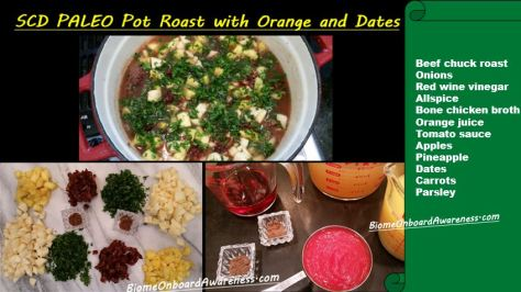 Pot Roast With Orange and Dates