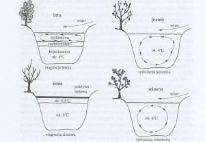 Stratyfikacja termiczna jezior i dynamika mas wody