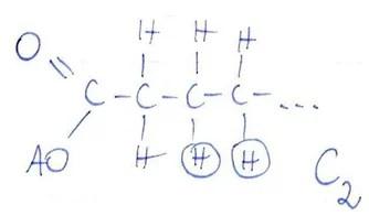 b-oksydacja
