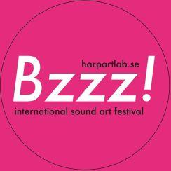 Bzzz! International Sound Art Festival, Sweden 2014