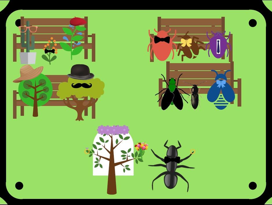 Mariage entre Plante et Insecte