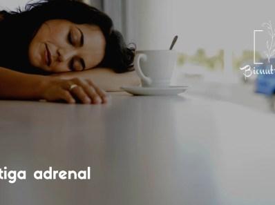 Fatiga adrenal-Bionutrición Ortomolecular