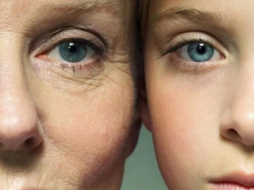 colageno y envejecimiento
