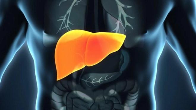 Detox hepática con nutrición ortomolecular