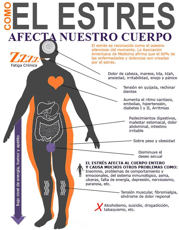 Estrés crónico- Bionutrición Ortomolecular
