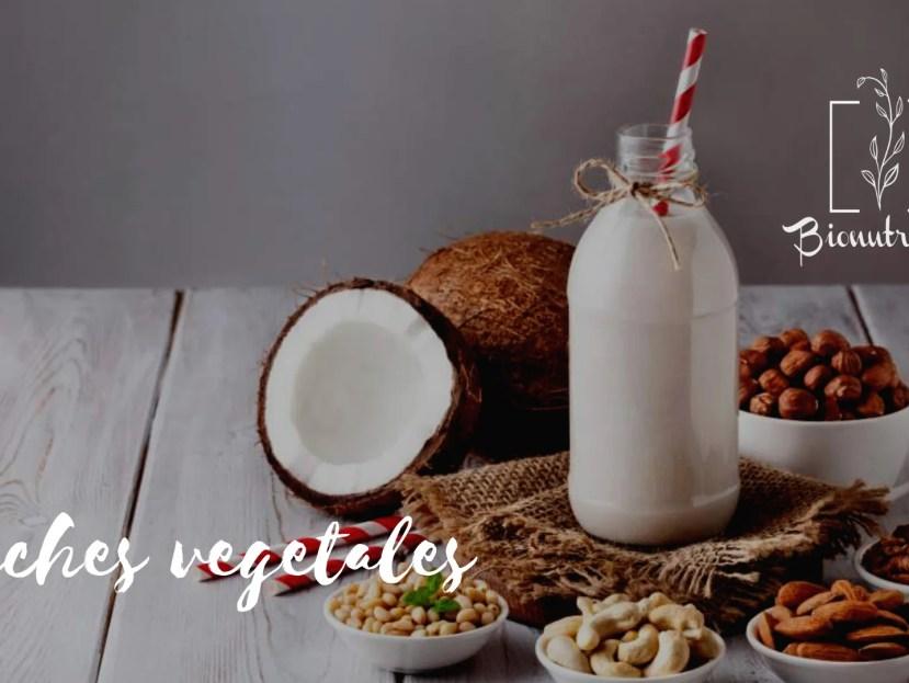 Leches vegetales: propiedades nutricionales y beneficios para la salud- Bionutricion Ortomolecular