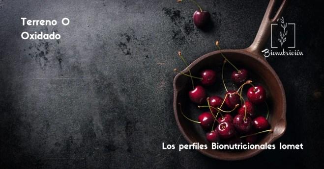 Terreno O- Oxidado by Bionutrición Ortomolecular