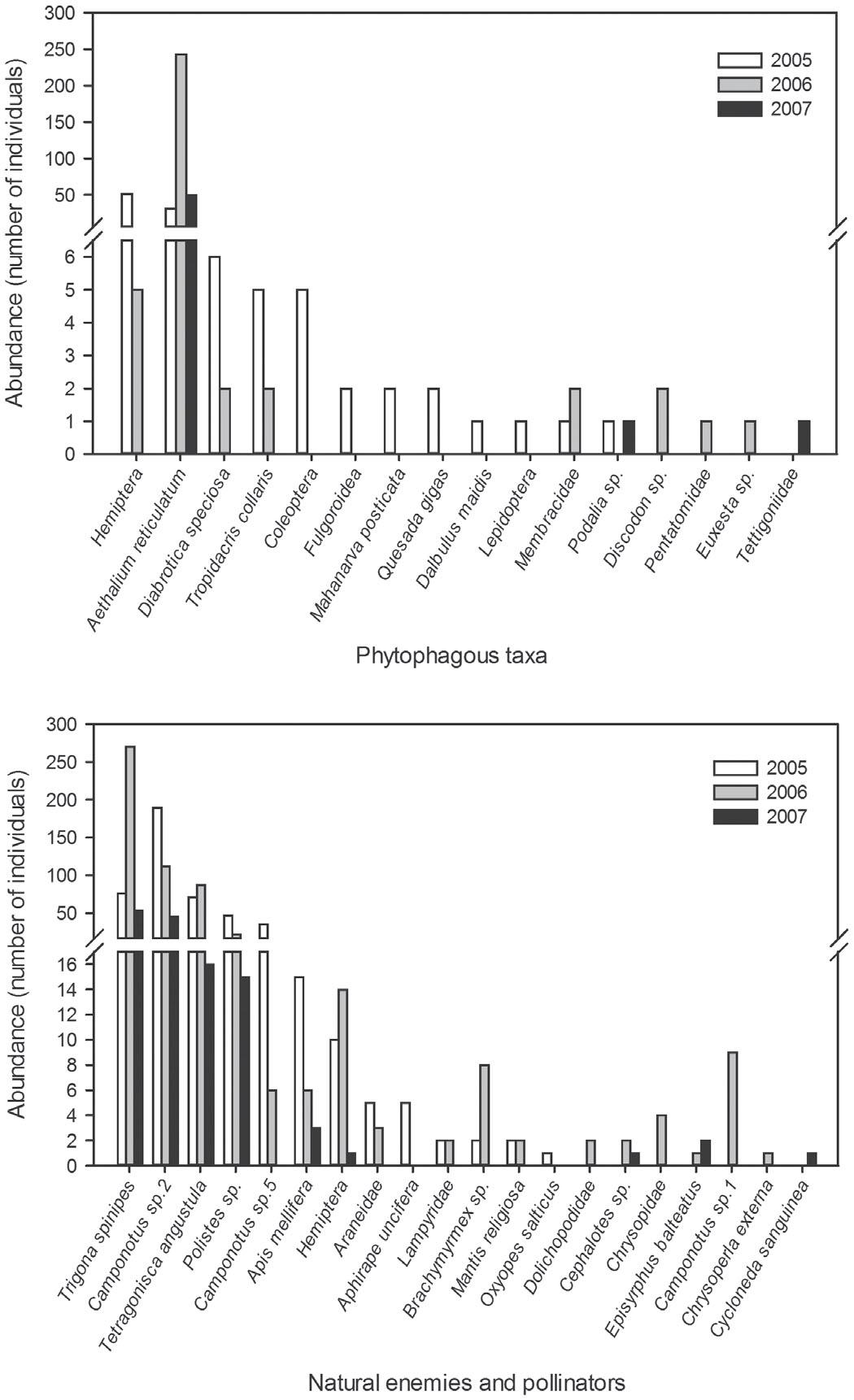 Seasonal Abundance And Diversity Of Arthropods On Acacia