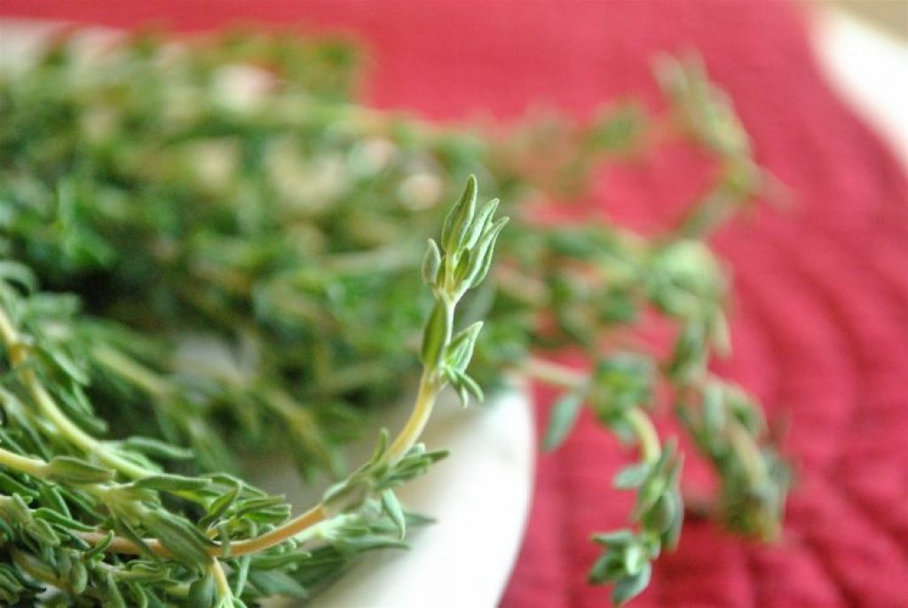 What'rethe Five Benefits of Fresh Thyme?