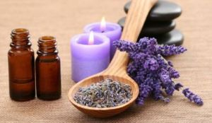 Lavender: benefits and general use